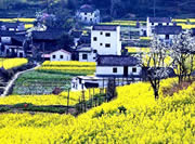the most beautiful village - Wu Yuan