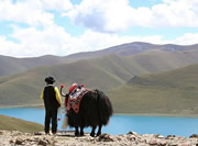 Yamdrok-tso Lake in Tibet