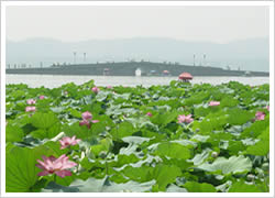 Hangzhou Tours, Hangzhou Tour Packages